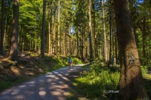 BergischerStreifzugFuhrmannsweg-(260)