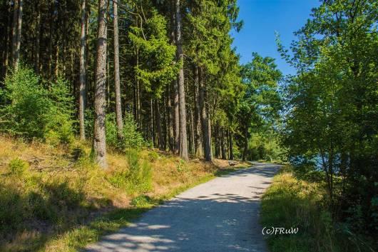 BergischerStreifzugFuhrmannsweg-(283)