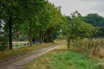 dehningshof_weesen-152