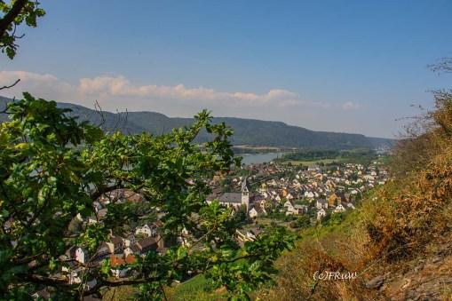 rheinsteig_rodenbach_leutesdorf-183