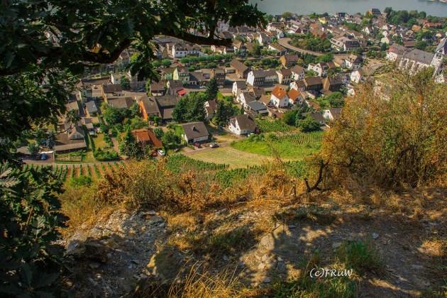 rheinsteig_rodenbach_leutesdorf-187
