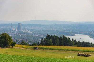 rheinsteig_rodenbach_leutesdorf-243