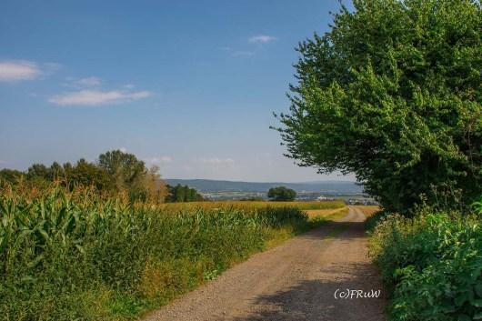 rheinsteig_rodenbach_leutesdorf-246