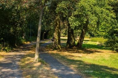 Wege im Park in Hermannsburg