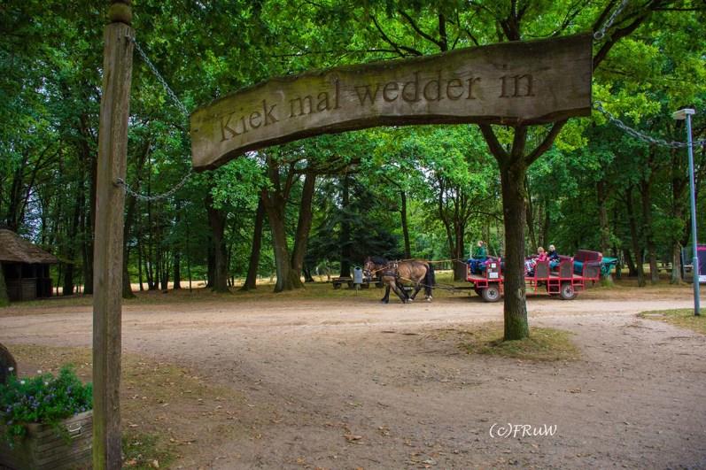 heidegarten_und_schafstall-36