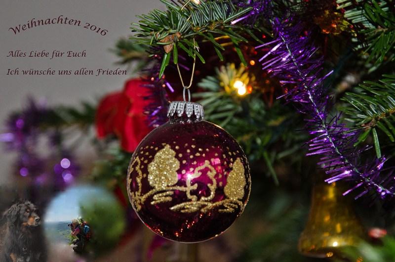 weihnachtsgruse-2016-wp2