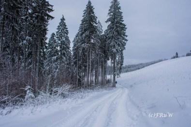 bergischerstreifzugwacholderweg-41
