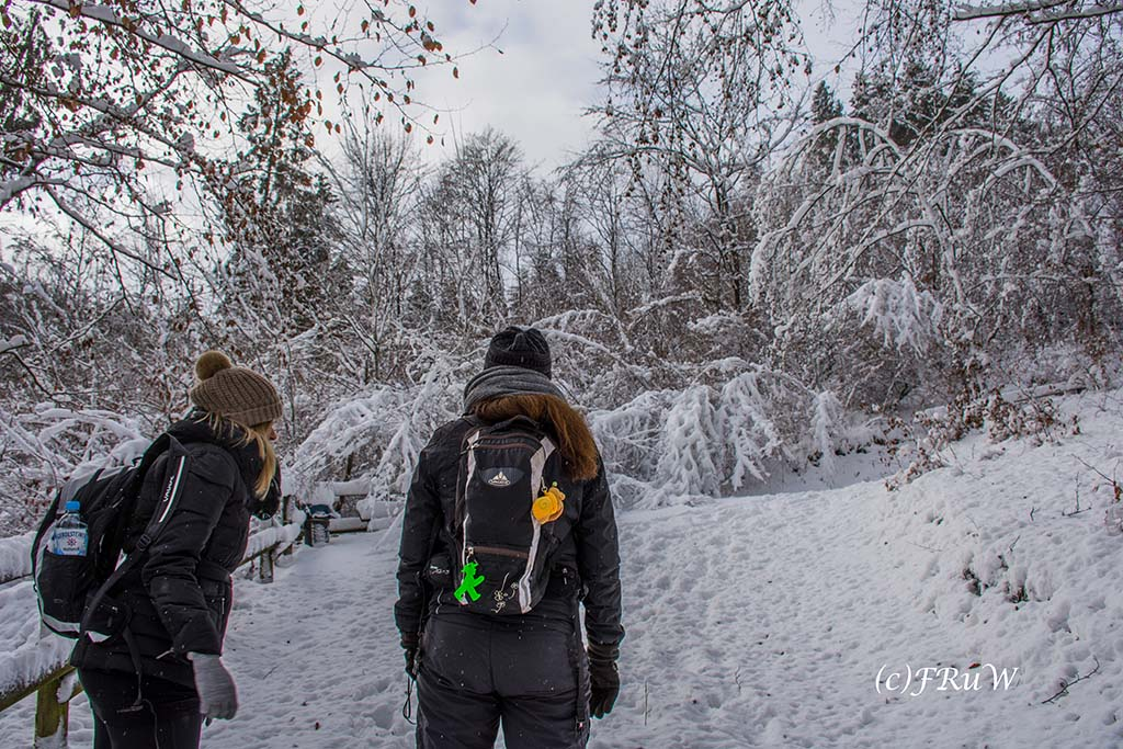 Schneewandern an der Oleftalsperre Tanja und Farina