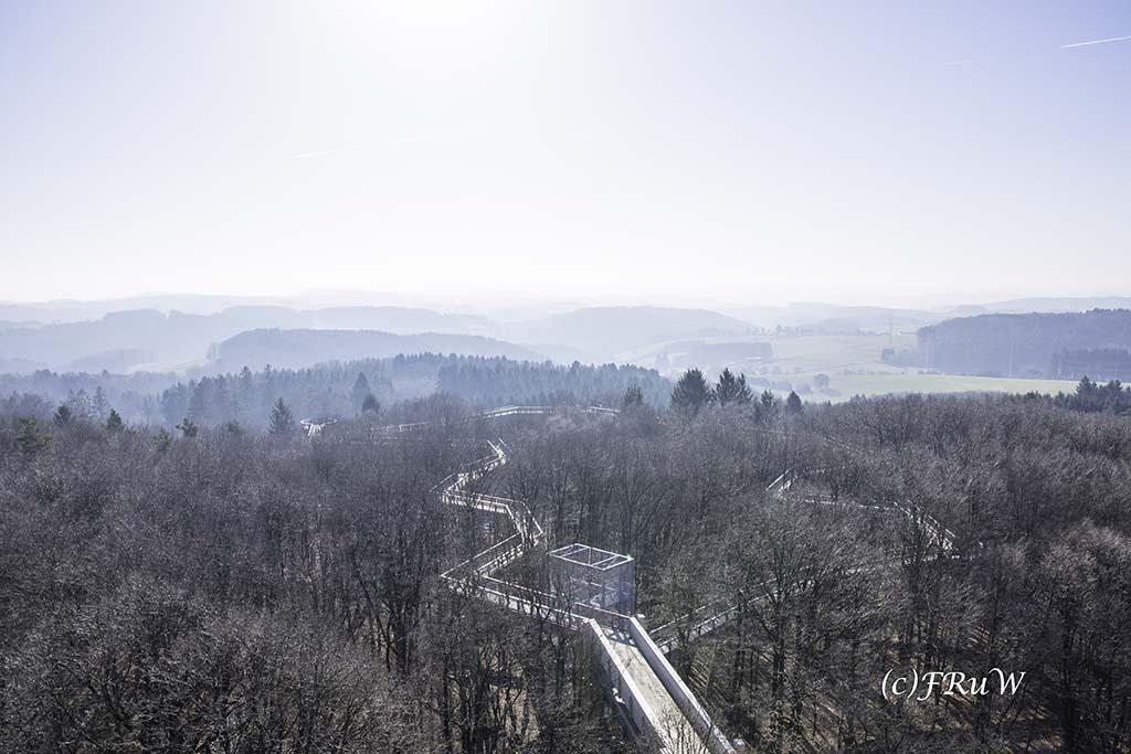 panarbora-burg-windeck-26-von-139