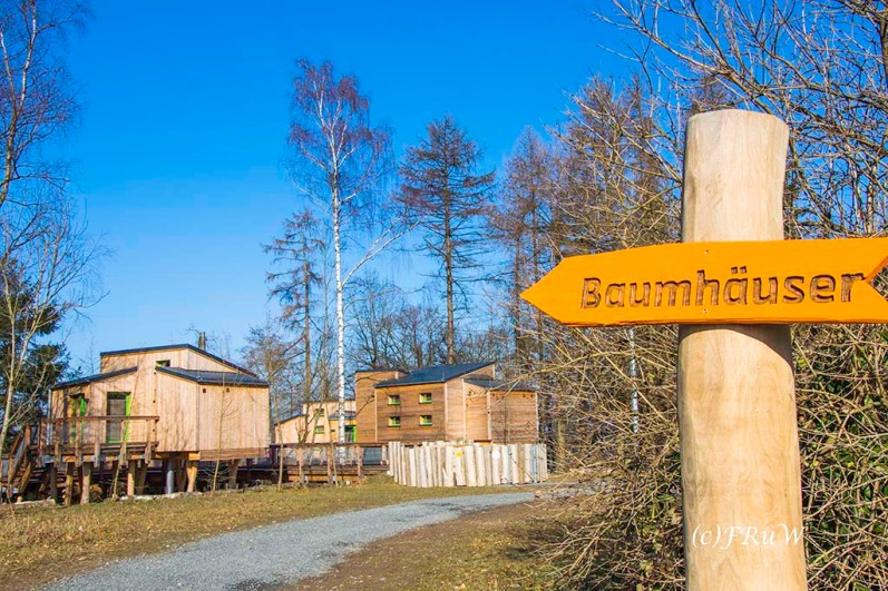 panarbora-burg-windeck-65-von-139