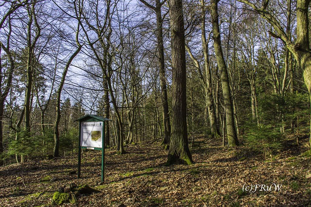 Eisenweg_No5 (139)