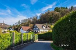Hungenbachrunde (145)