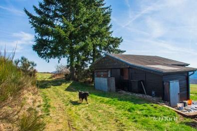 KirchwaldPanoramaweg (123)