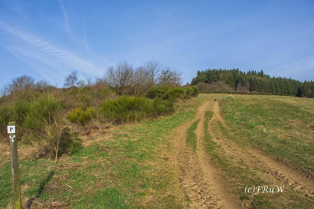 Wiesen weg auf dem Panoramaweg Kirchwald