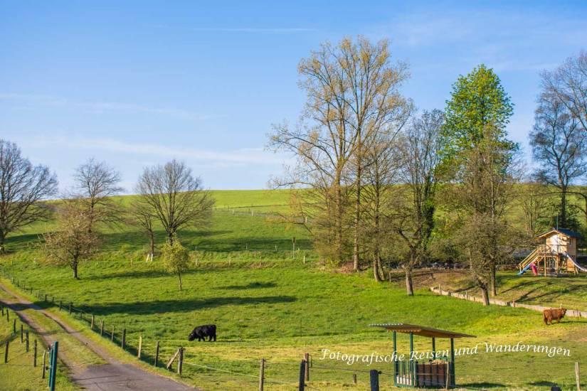 Feldweg zwischen Wipperfel und Grüterich