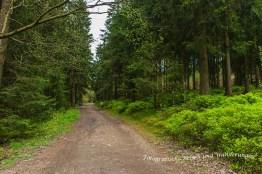 Liebesbankweg (71)
