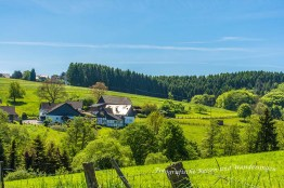 Rundweg-Klasmühle (132)