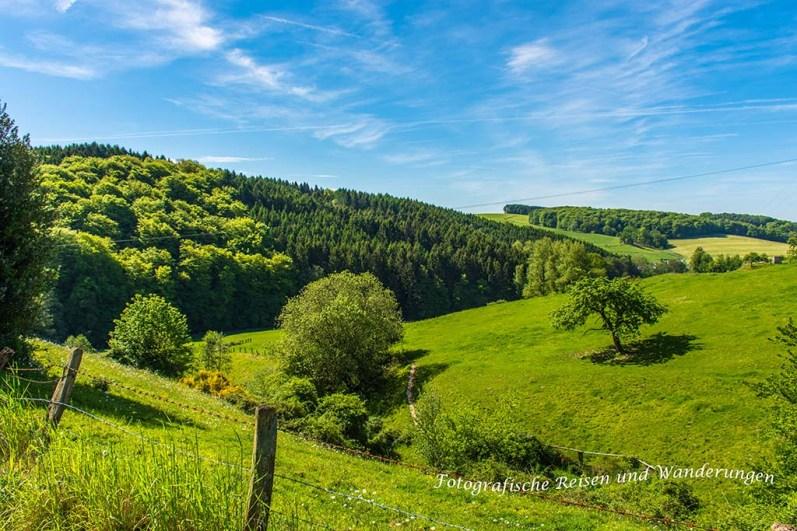 Wiesen-Wege-Bergisches Land