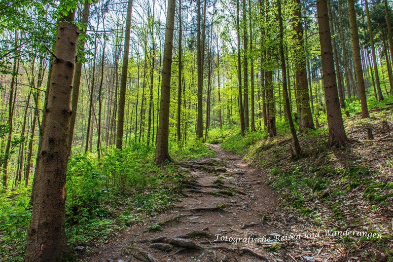 Roamntsche Pfade führen hinunter nach Treseburrg