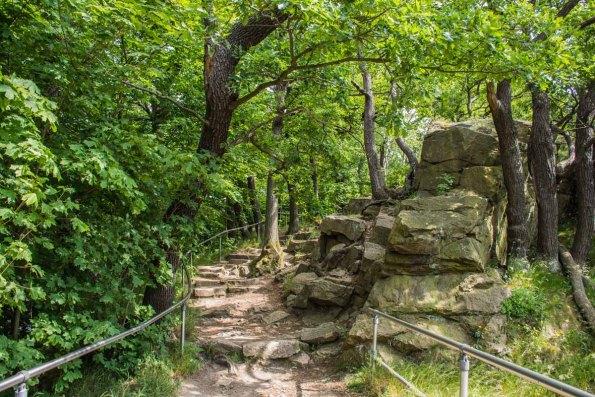 Felsige Wege oben an der Roßtrappe