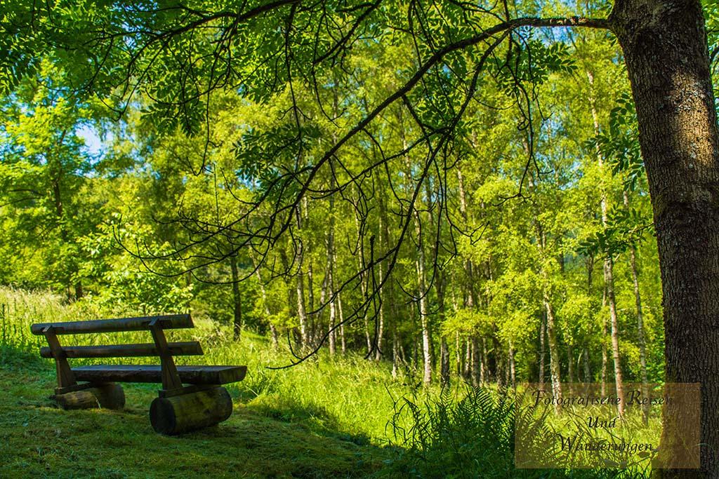 Naturdenkmal Sechs Eichen - Traumhafter Rastplatz
