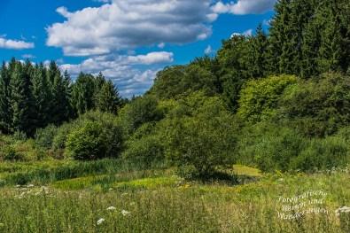 Hörlepanoramaweg (142)