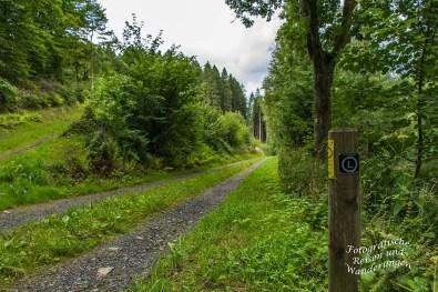 Oberbergischer Lutherweg (11)