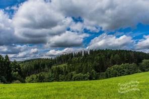 Wattebäuschchen-Wolken tummeln sich am Himmel