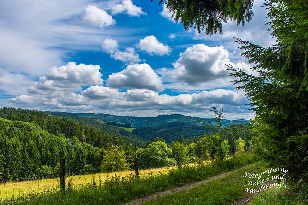 Oberbergischer Lutherweg (83)