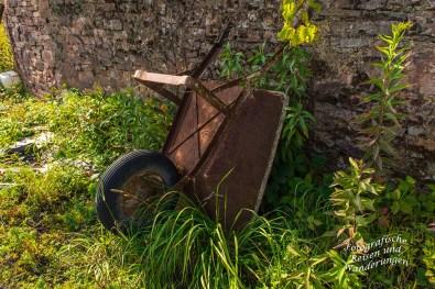 Schubkarre im Weinberg