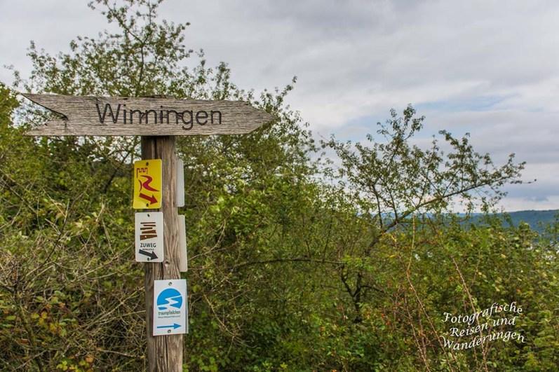 Hier könnte ich zurück nach Winningen