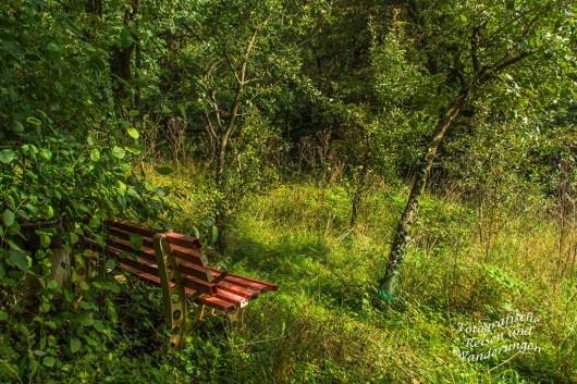 Vergessene Bank in einem Garten
