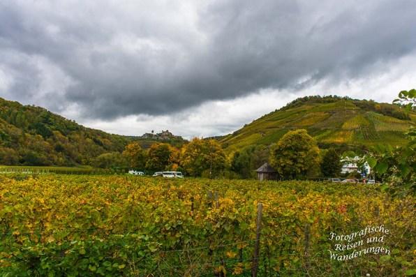 Blick auf die Saffenburg Ruine