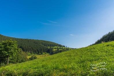 Sanft wellige Landschaft am Rande von Westfeld