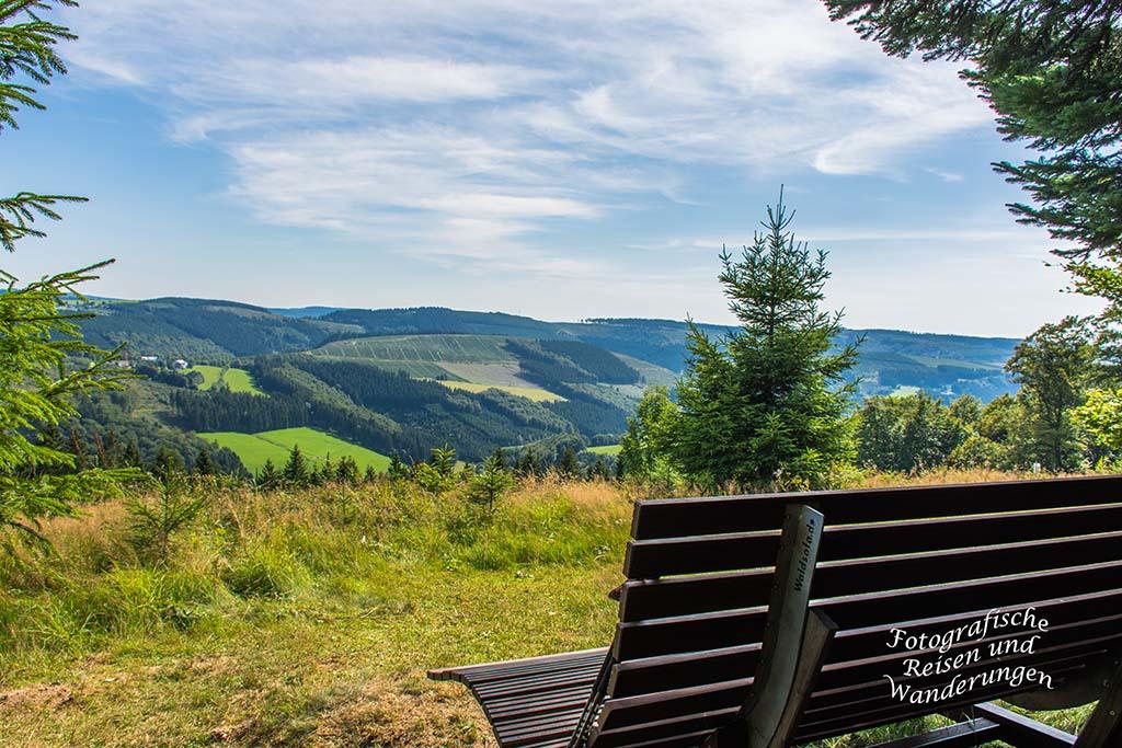 Waldsofa und Panoramablick