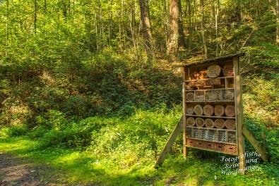Insektenhotel im Hoensteinsbachtal