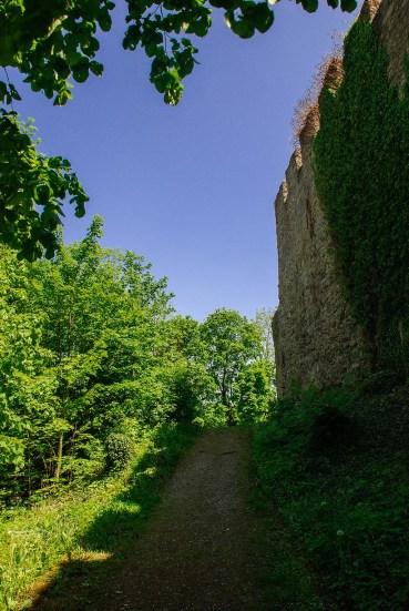 An der Werra - Umgebung Creuzburg (9)