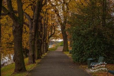 Stammheim_Schlosspark (119)
