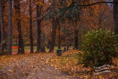 Bättertaumel Schlosspark Stammheim