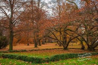 Parkanlage Stammheim Schlosspark
