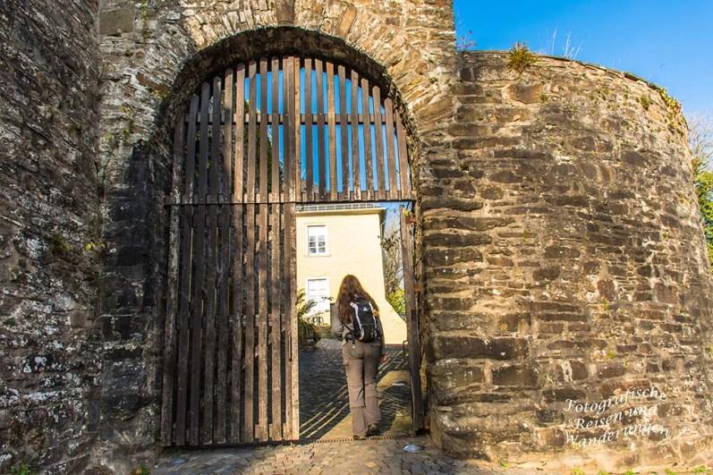 Eingang Schloss Homburg