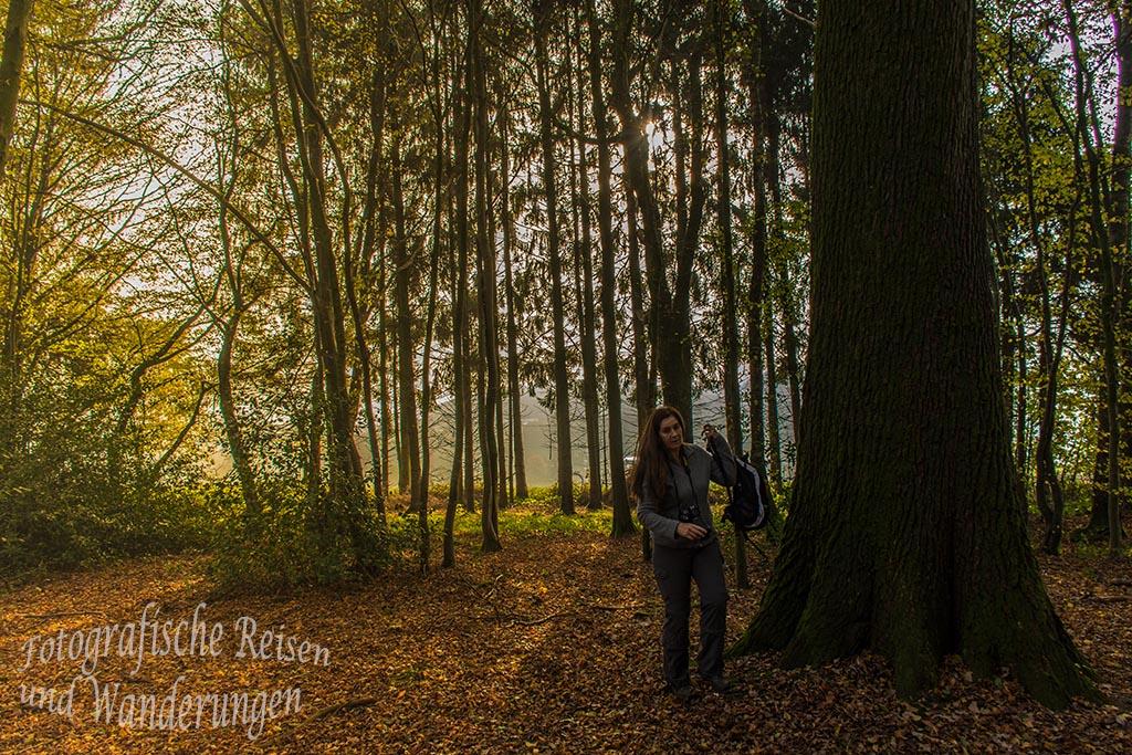 Turm_Route_Schloss-Homburg (39v)