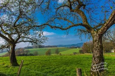 Turm_Route_Schloss-Homburg (70)