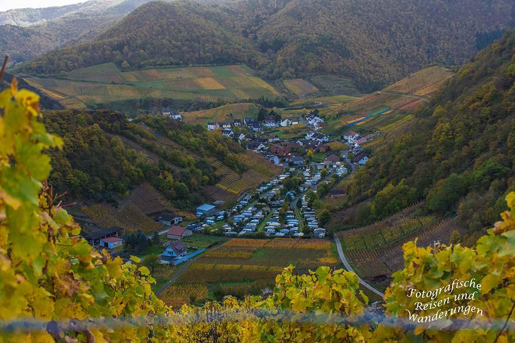 Blick auf Mayschoß in der Herbstsonne - Wandern Rech