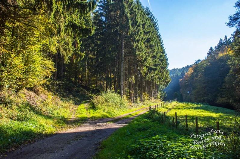 Weg zur Thielemühle auf dem Moselseitensprung Graf Georg Johannes Weg