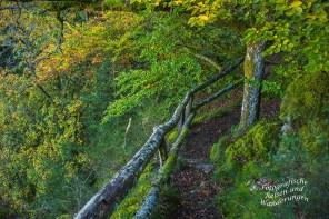 Umgebung Pionierfelsen auf dem Moselseitensprung Garf Georg Johannes Weg