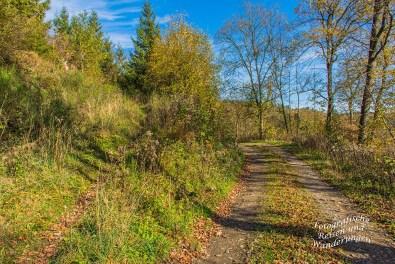 Wanderweg im Mängsserhäck (Menzerheck) mit weitem Blick ins Land