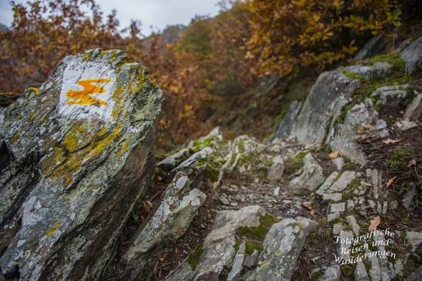 Traumpfad Nette Schieferpfad (33)