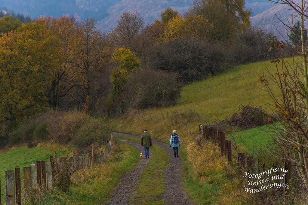 Ein Wanderpaar mit Hund auf dem Weg