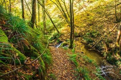 Seilsicherung am Wasserfall in der Hölzbachschlucht
